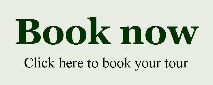 Book now 0
